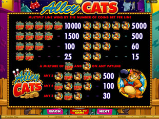 Alley Cats Slots Payout